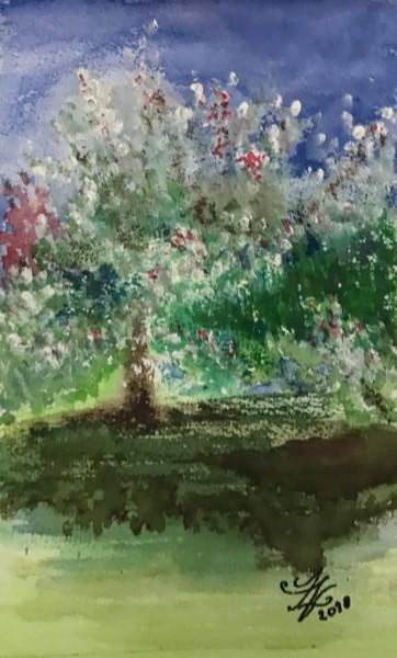 Le printemps à Sainte Anne